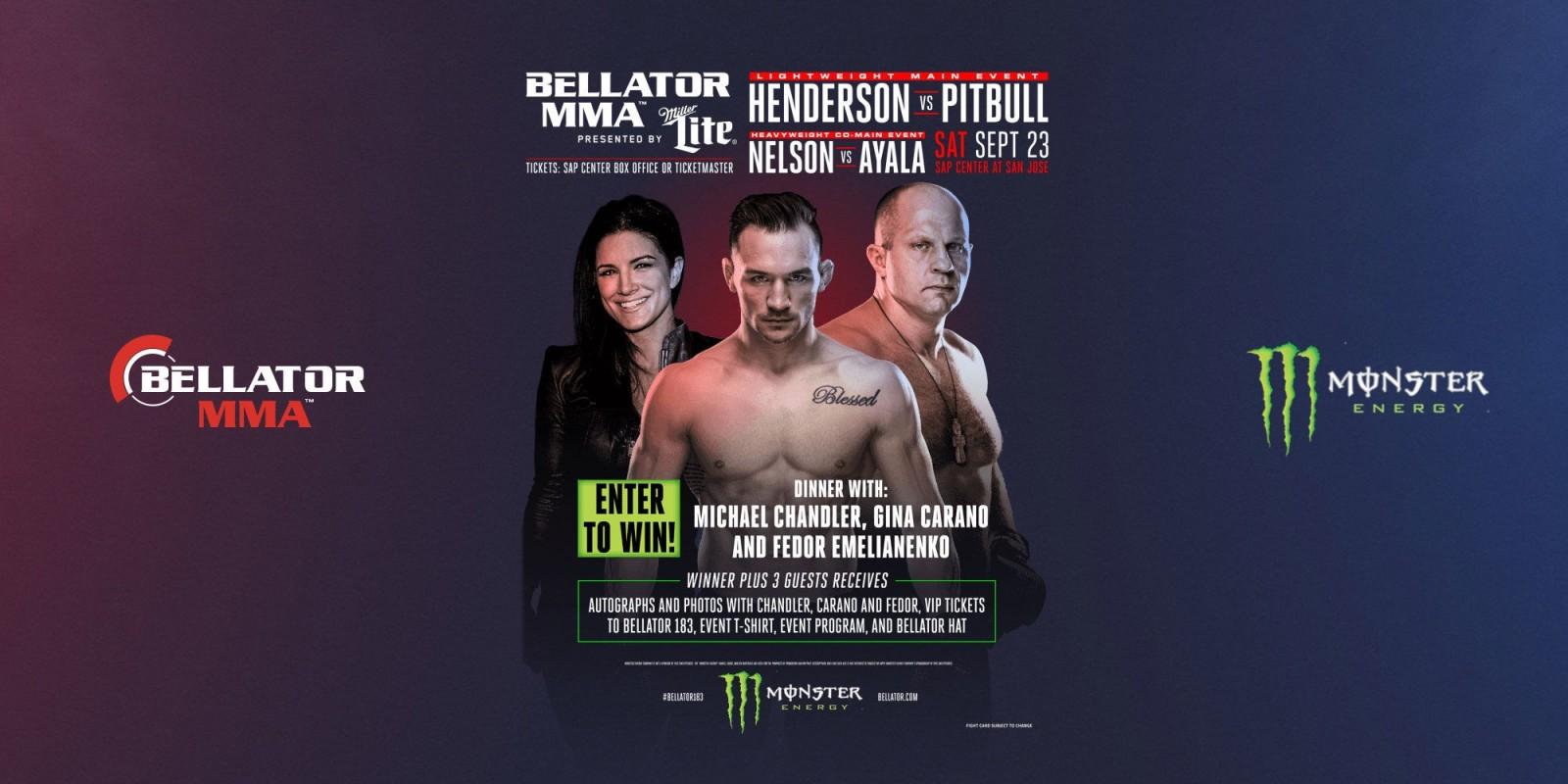 2017 Web Bellator 183 Hero image