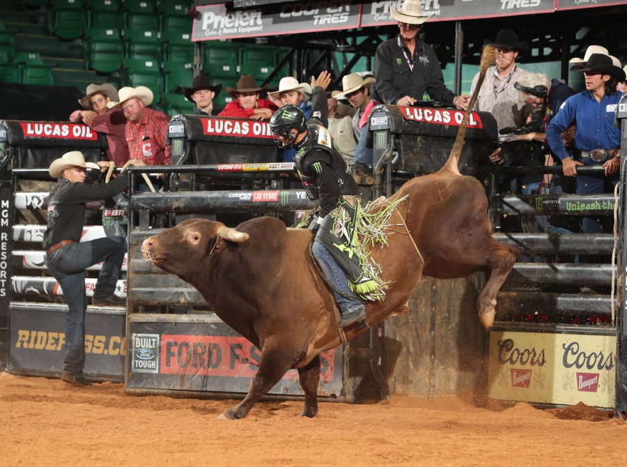 Images from 2019 Fairfax PBR Unleash the Beast